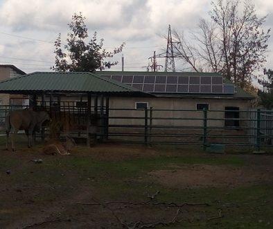 зимівник сонячні панелі
